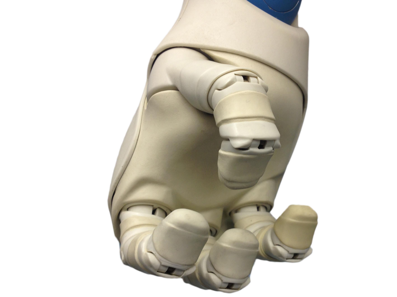 Anthropomorphism of robots